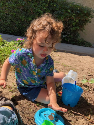 Child digging in the dirt